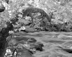 Hayman Falls, Embarrass River (WI) Basswood Arch, September 2011